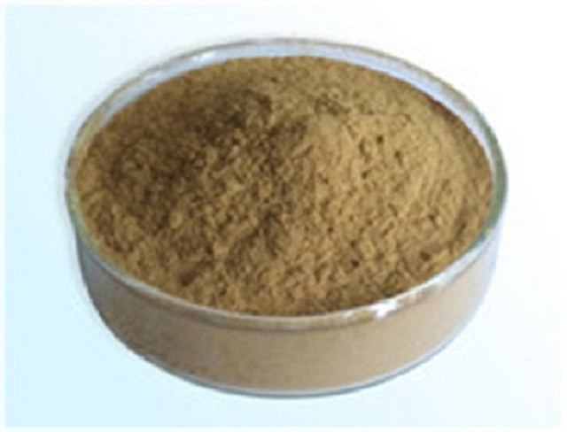 Sea Buckthorn Extract Manufacturer