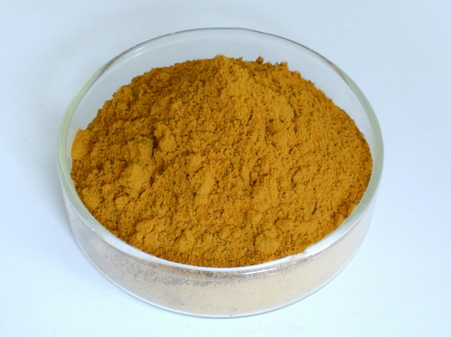 Salvia Miltiorrhiza Extract Supplier