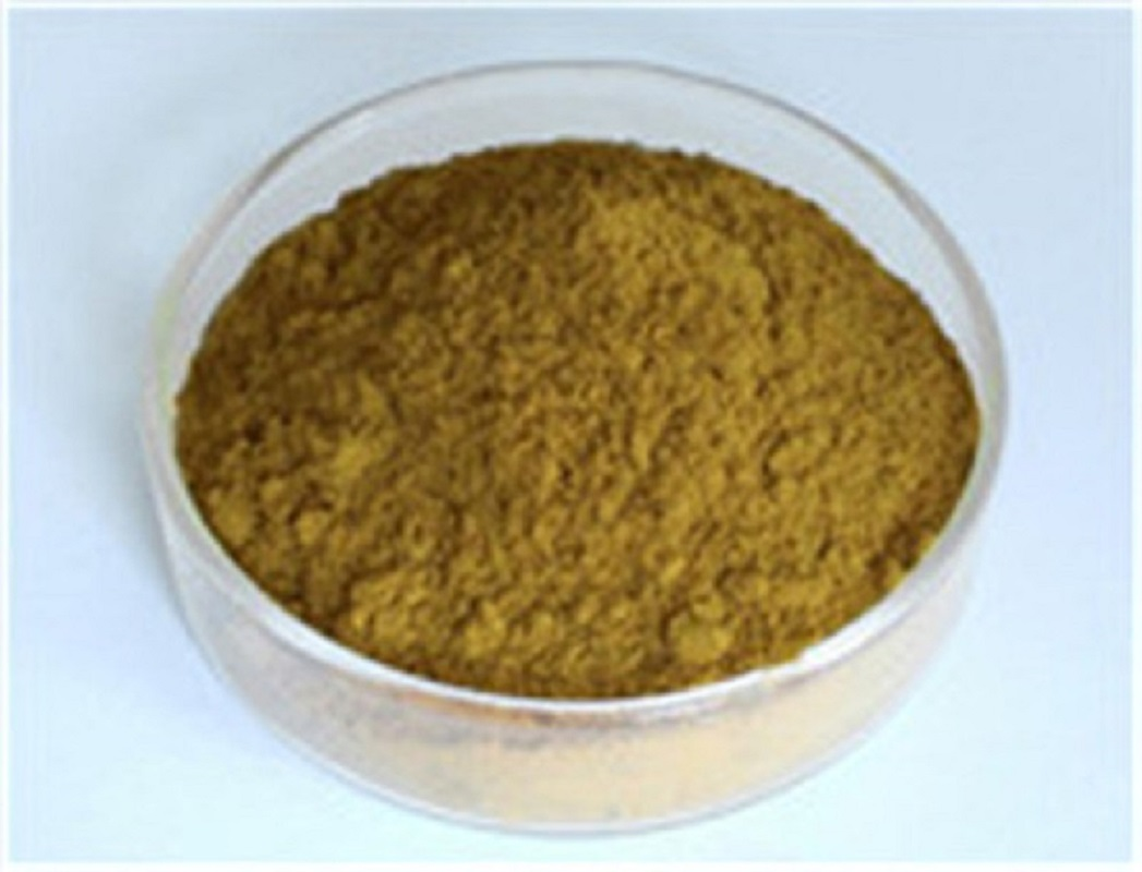 Cistanche Tubulosa Extract Supplier