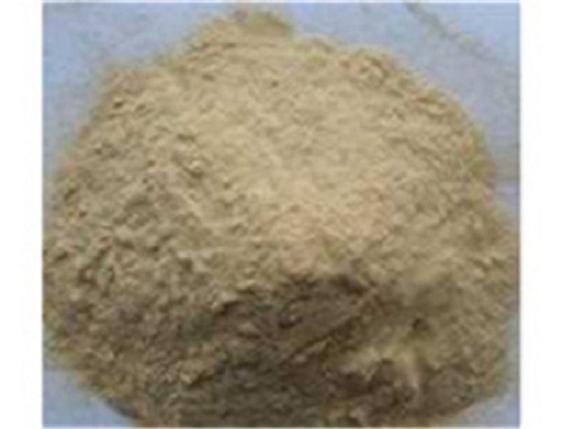Sophora Root Extract Factory