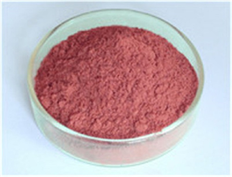 anti-tumor Grape Seed Extract Manufacturer