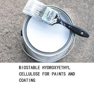 Biostable Hydroxyethyl Cellulose For Paints And Coating