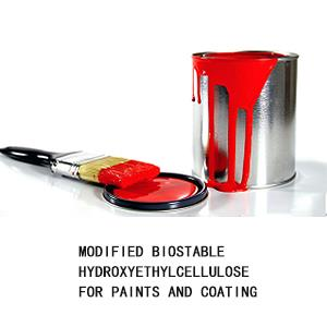 Modified Biostable Hydroxyethyl Cellulose For Paints And Coating