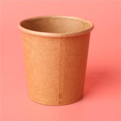 PLA Leak Proof Paper Coffee Cup