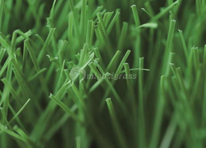 Residential Artificial Grass, MT-Venus