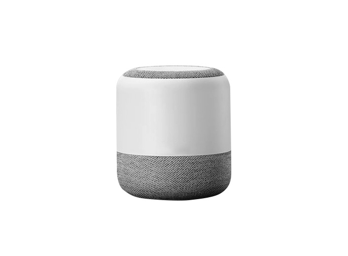Smart AI Speakers