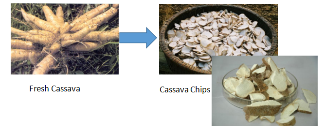 Cassava Chips Machine 2019