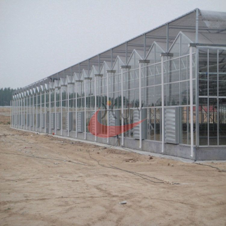Agricultural Polycarbonate Greenhouse  Agricultural Glass Greenhouse