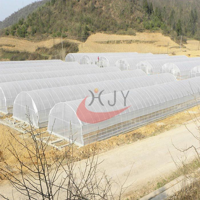 Agricultural Single Span Plastic Film Greenhouse  Agricultural Single Span Greenhouse