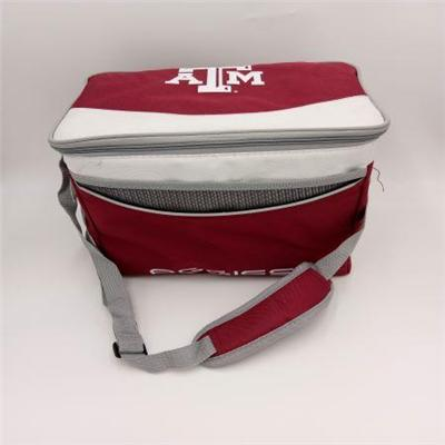 Polyester 6-CAN Cooler Bag