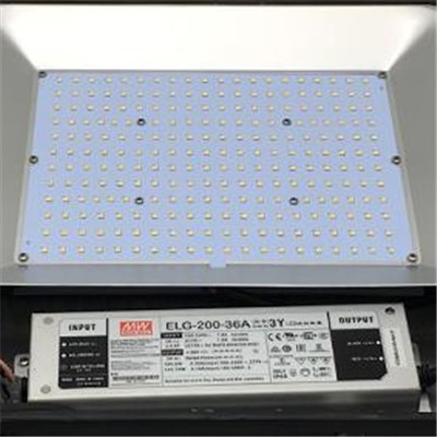 150W LED Flood Lights