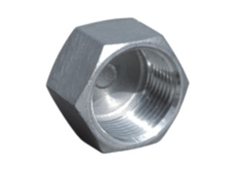 HEXAGON HEAD CAP  Stainless Steel Hexagon Plug wholesale