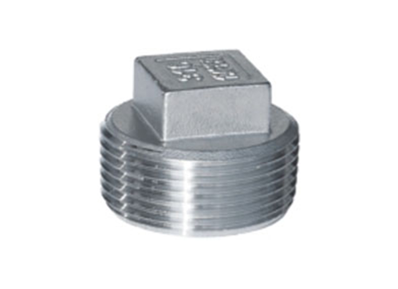 SQUARE PLUG  Threaded Fitting   Stainless Steel Square Plug China