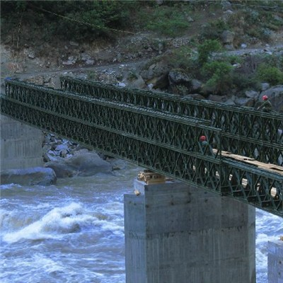 Steel Frame Bridge