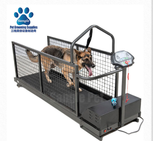 Canine Land Treadmill,Canine Treadmill,Dog Treadmill,Treadmills