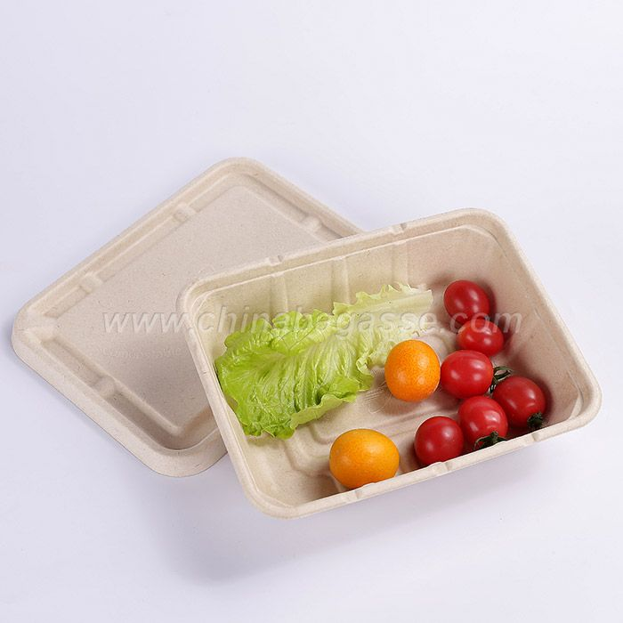 1200ml 2Com Rectangle Sugarcane Container