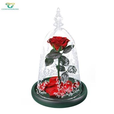 Beauty And The Beast Preserved Rose