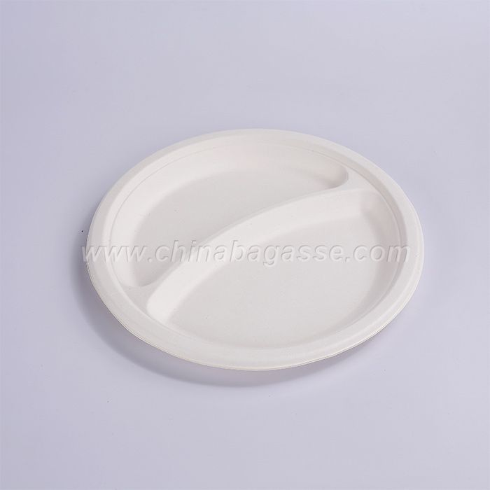 Biodegradable disposable China Sugar Cane Bagasse White Pulp Birthday Paper Plate For Environmental