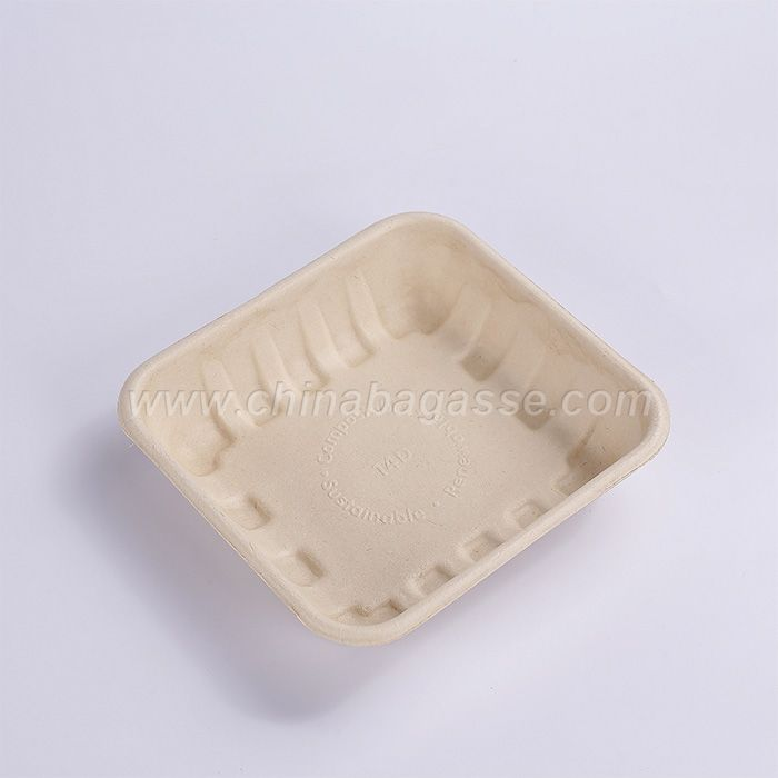 100% biodegradable sugarcane bagasse tray disposable paper kids party supplies tray