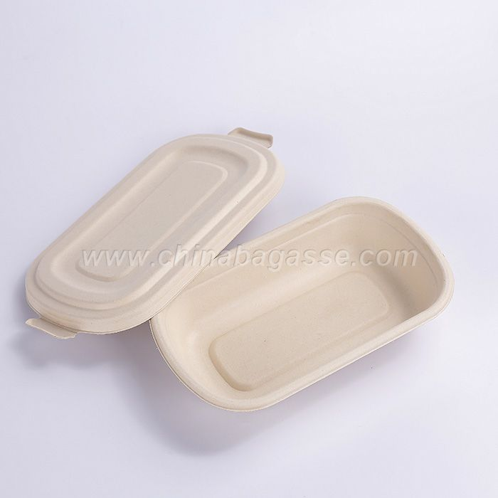 750ml Eco-Friendly Bagasse Pulp Food Container bowls Disposable Biodegradable compostable Sugarcane paper pulp Bowl