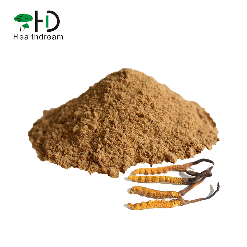 Pure Cordyceps Powder, 100% Fermented Cordyceps sinensis powder