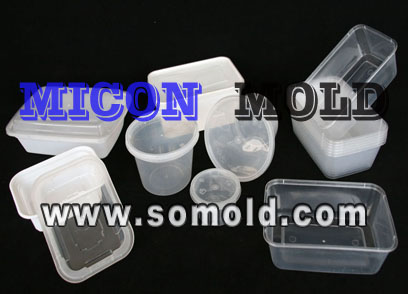 Plastic mould for food container