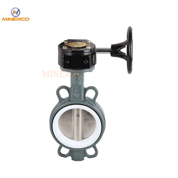 Ductiler Iron Wafer Butterfly Valve with Worm Gear