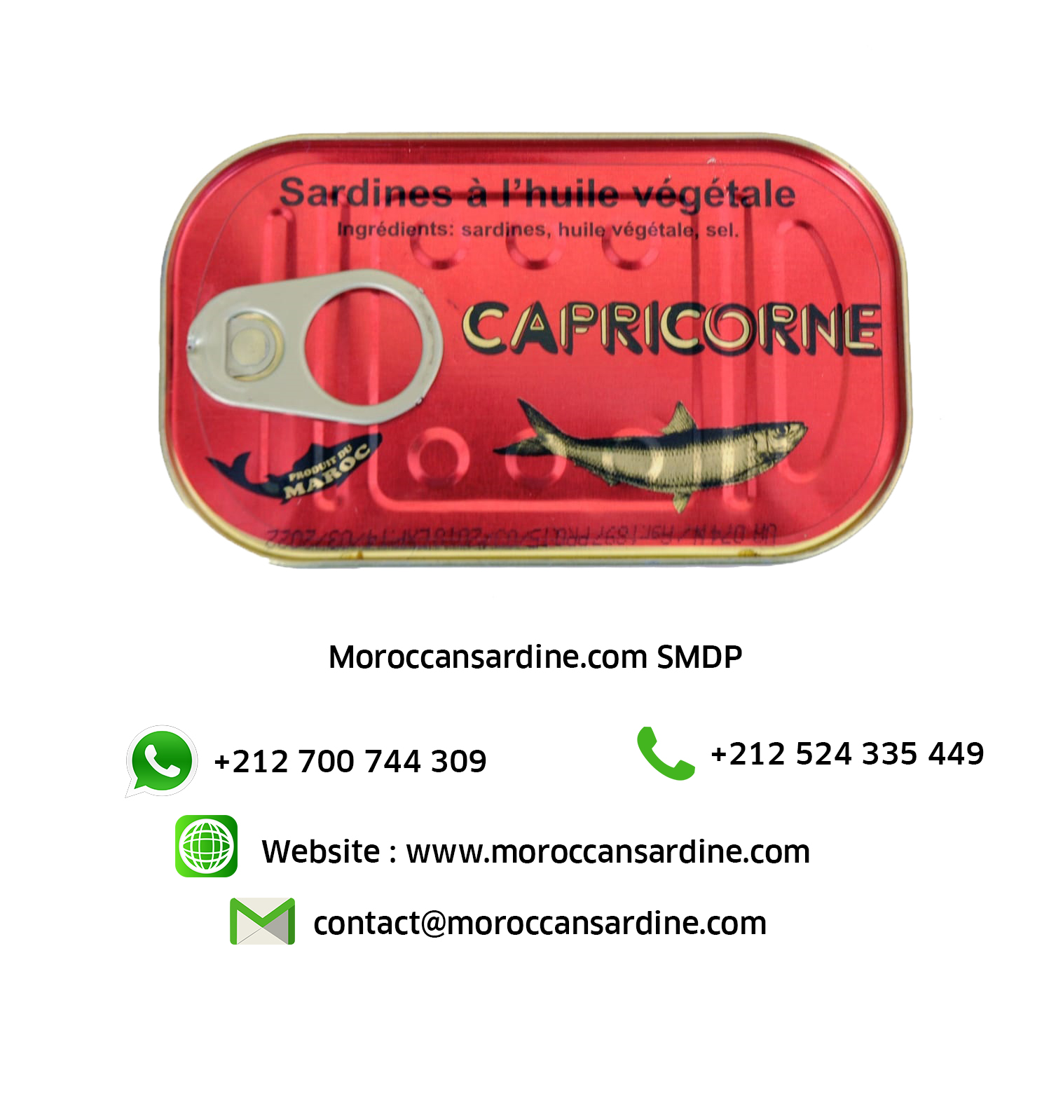 Authentic Moroccan sardines