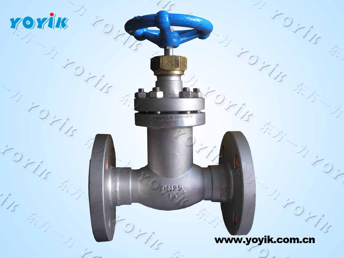 Dongfang turbine parts stainless steel globe throttle check valve (welded) LJC100-1.6P