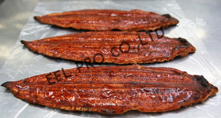 heada on back-cut frozen roasted eel