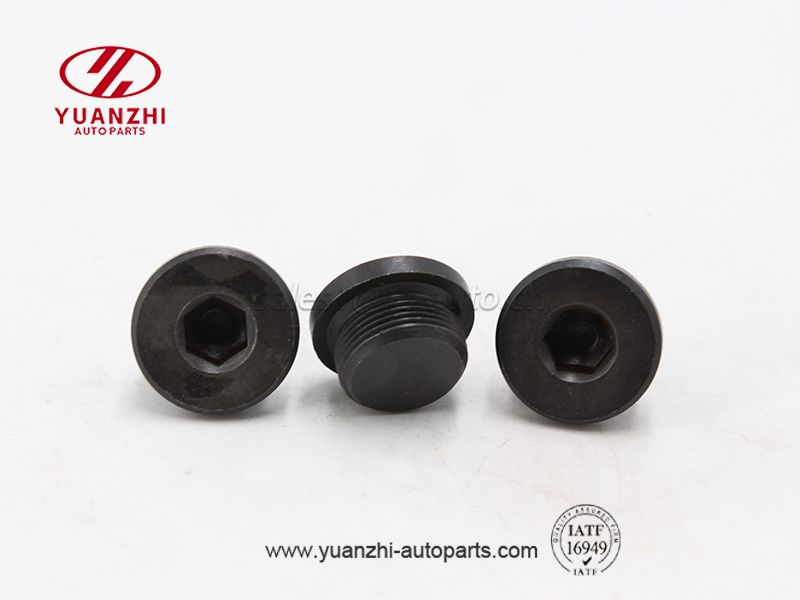 Black Hex Socket Oil Pipe Plugs Factory
