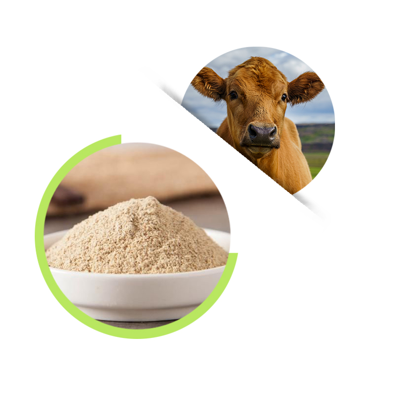 Vitamin D3 powder 500,000IU/G, Animal Feed Vitamin D3