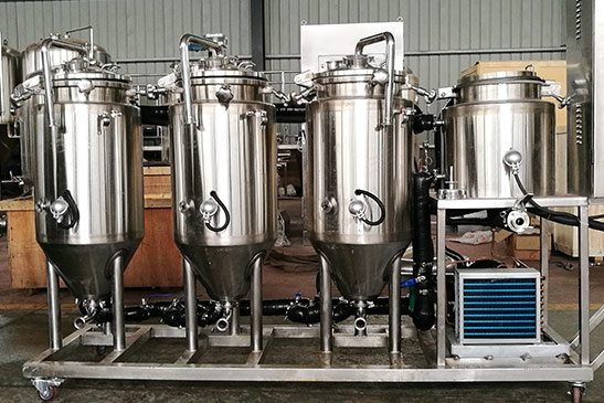 Mini Fermenter for Micro Brewery Systems