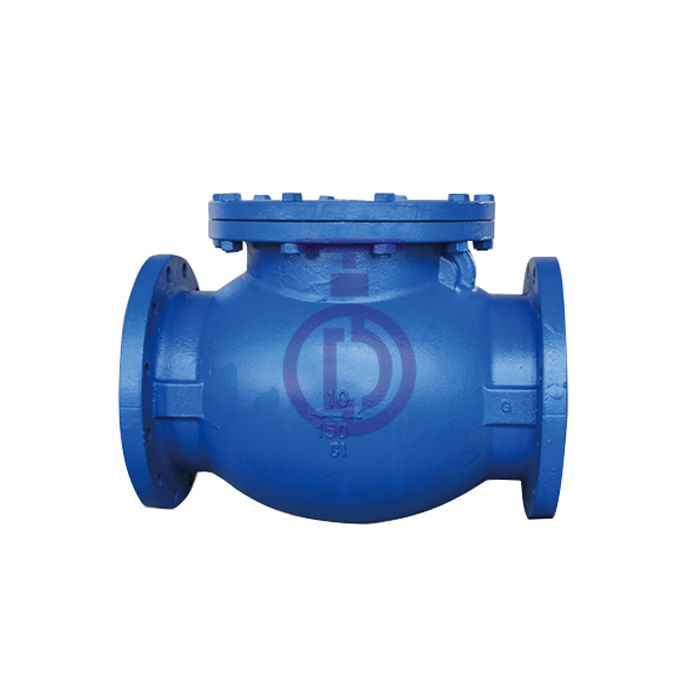 Swing Check Valve Outside Lever and Weight or Spring