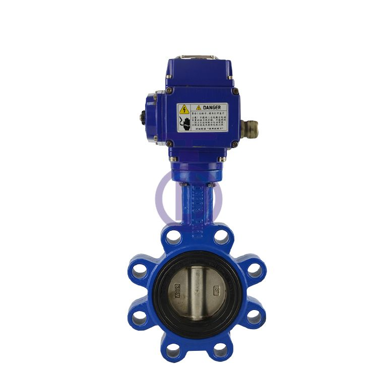 Electric Lug Butterfly Valve Supplier China