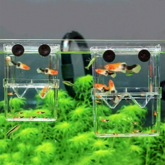 Fish Breeding Tanks