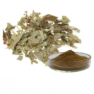 Epimedium Extract Powder-10%, 20% Icarrins