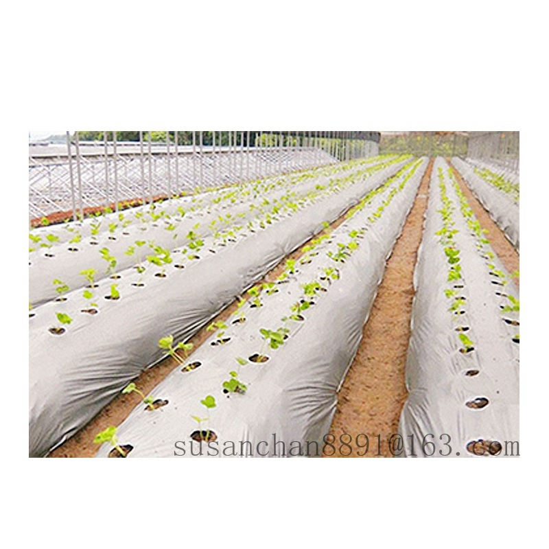 Mulch Film Agricultural Plastic Film Mulch Layer Mulch Layer