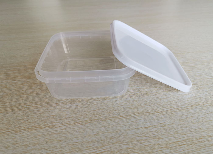 Disposable PP plastic packing box