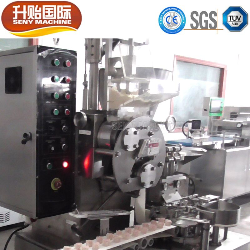 SY-880 Automatic Dimsum Sumai Shaomai Making Machine sumai machine