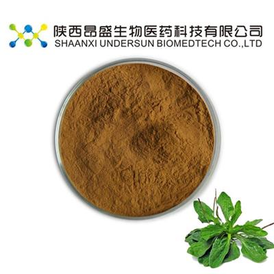 Organic Asiatic Plantain Herb Extract