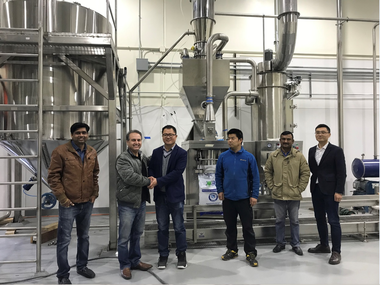 flour and flavor Bagging machine fully automated packing line for Bagging system fully automated packing line Textured Protein Bagging Machine Packing Machine bagging palletizing system