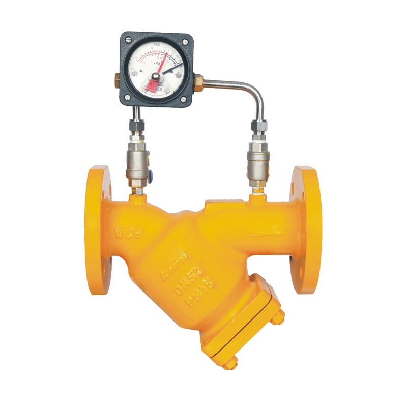 WCB Flnage Ends Fuel Gas Y Strainer with Gauge