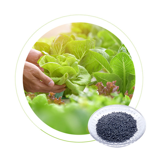 Dr Aid China potassium fertilizer NPK 20 20 20 for Vegetables