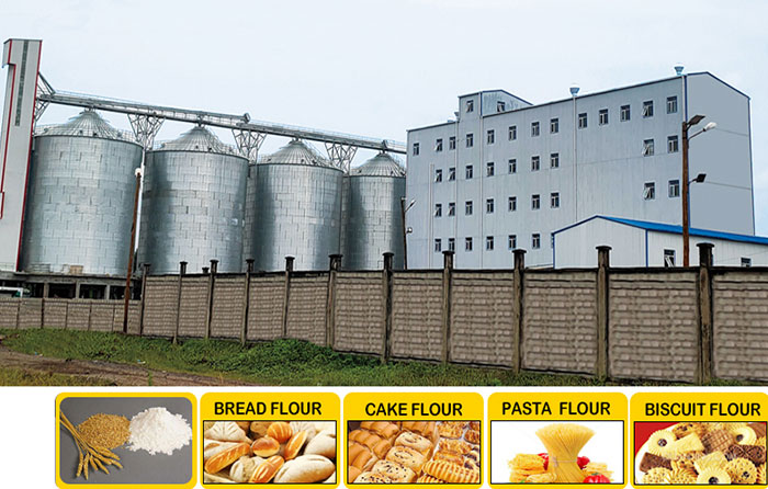 Multi-story Steel Structure Flour Milling Plant
