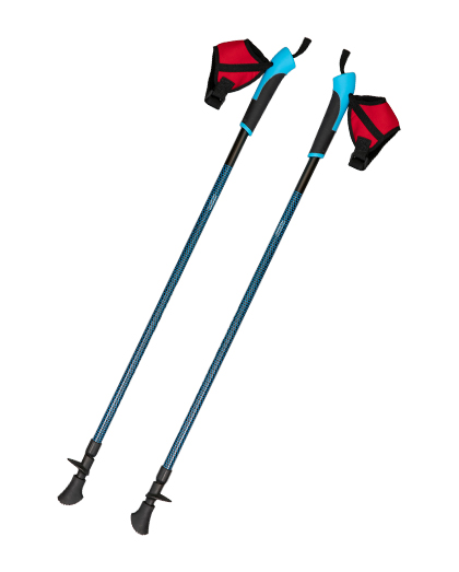 2 Sections Carbon Nordic Walking Pole