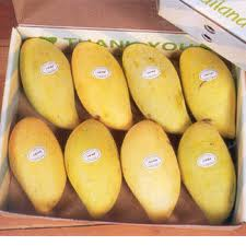 Pakistani Mangoes